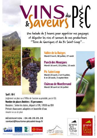 Affiche Vins & Saveurs du Pic