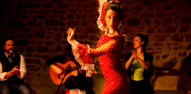 "Spectacle ""Tablao flamenco"". Photo : Morgane Defaix"