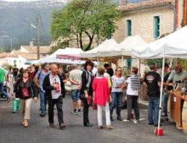 Festa de la Vendemia. Photo : Dominique Fesquet