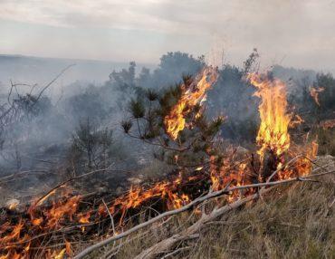 Ne jouez pas avec le feu. Photo : Christophe Colrat