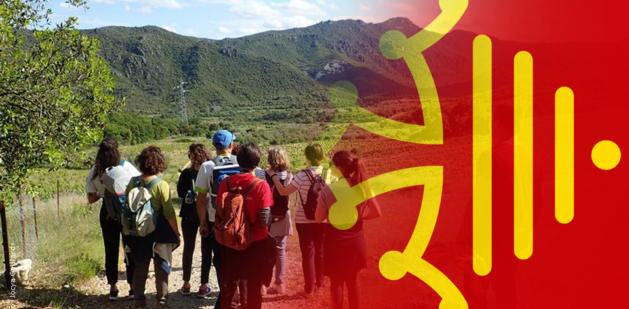 2020 Réunion Info Tourisme