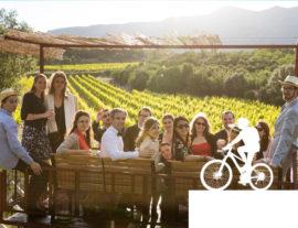 Balade Vins & Saveurs à vélo : Domaine Mas Brunet