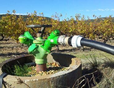 Irrigation de la vigne. Photo : Thierry Alignan