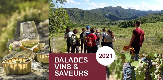 Balades Vins & Saveurs 2021 : à pied