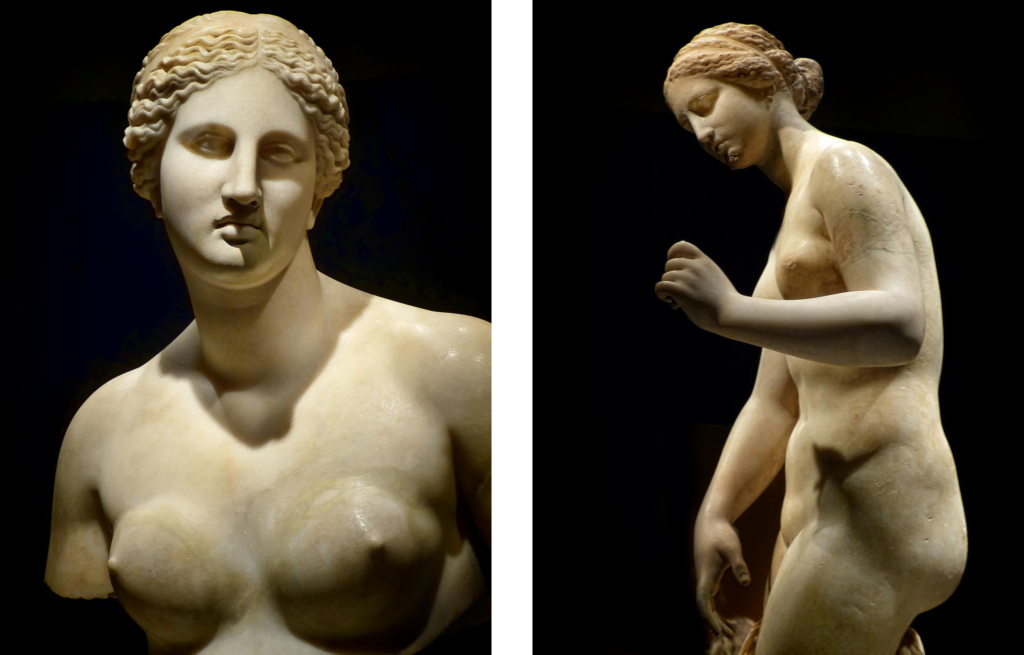 Bust of Aphrodite Roman copy of 360 BCE Greek original by Praxiteles found in the river Tiber in Rome (4) Side view of Aphrodite Roman copy of 4th century BCE original by Praxiteles from Ostia, Italy