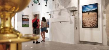 """Exposition """"L'Étrange demeure - Régis Domergue"""" à la Maison des Consuls (2020). Photo : Christophe Colrat"""